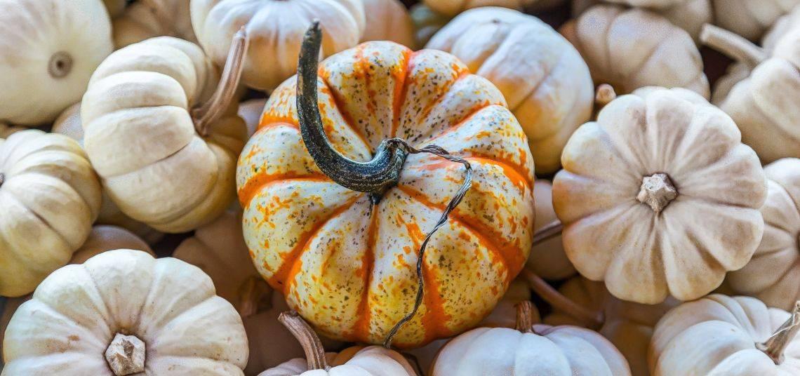 Selber Herbstdeko Basteln? Die 5 Besten Anleitungen.